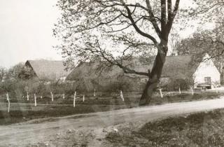Marvos dvaro ūkiniai pastatai. 1972 m.