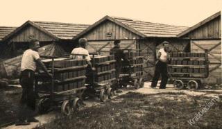 Garliavos plytinė. 1939 m.