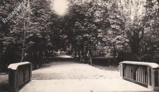 Tiltelis per Javonio upelį Vytauto Didžiojo parke. Apie 1935-1936 m.
